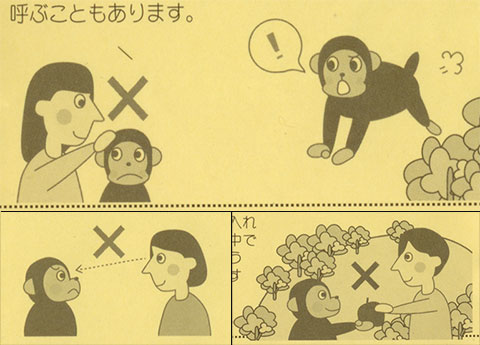 Monkey instructions